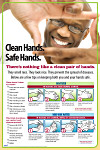 Clean Hands are Safe Hands Poster #405