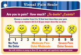 Pocket-Guide to Pain Assessment